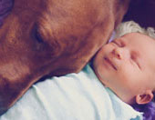 newborn baby with pet dog